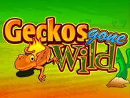 Geckos Gone Wild
